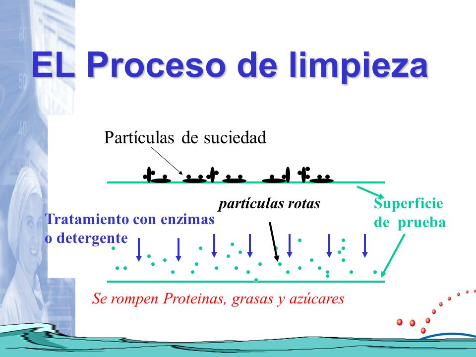 EL Proceso de limpieza Partículas de suciedad partículas rotas