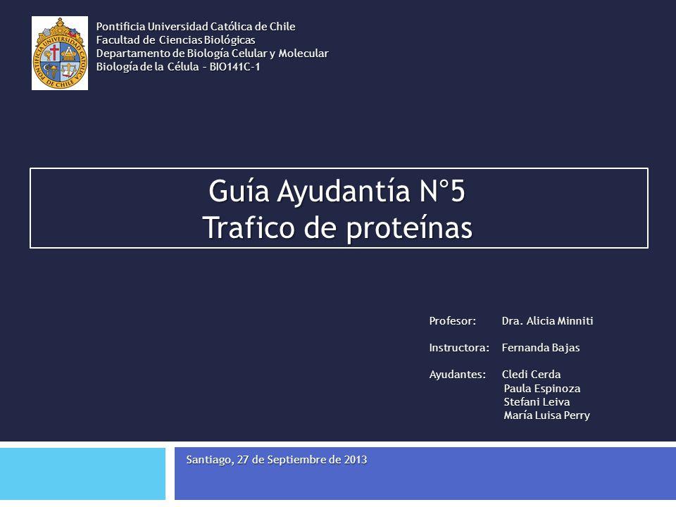 Guía Ayudantía N°5 Trafico de proteínas