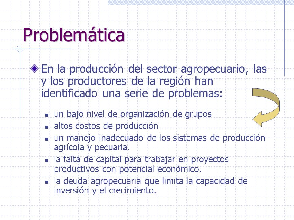 Problemática En la producción del sector agropecuario, las y los productores de la región han identificado una serie de problemas:
