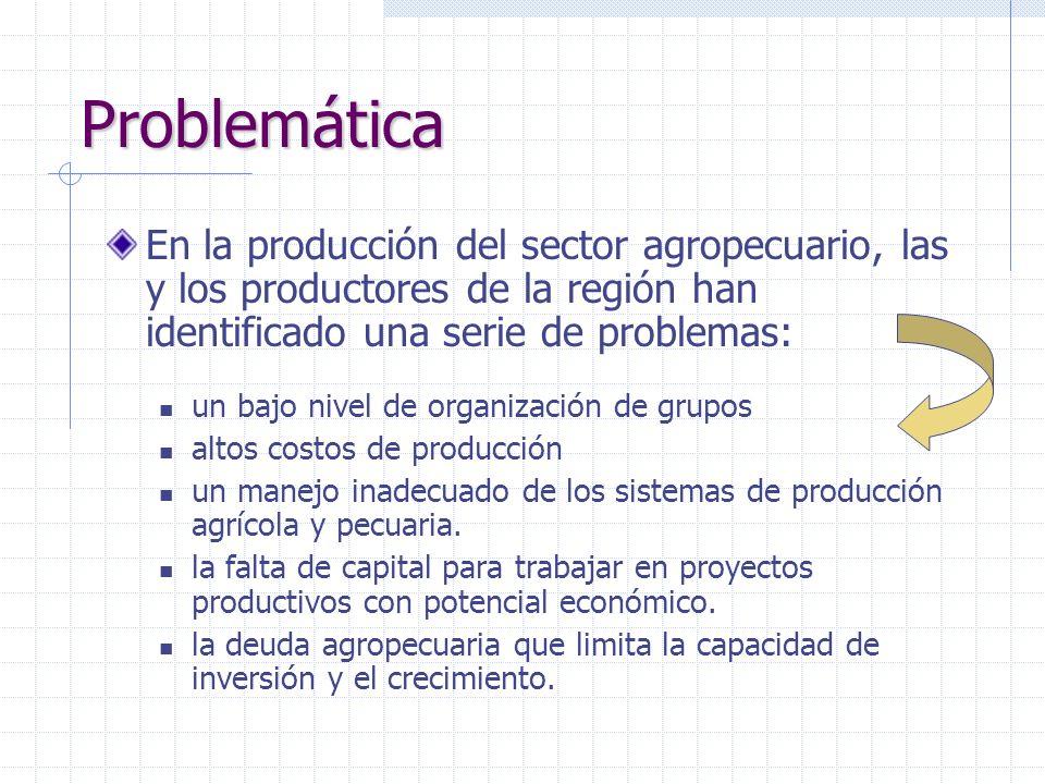 ProblemáticaEn la producción del sector agropecuario, las y los productores de la región han identificado una serie de problemas: