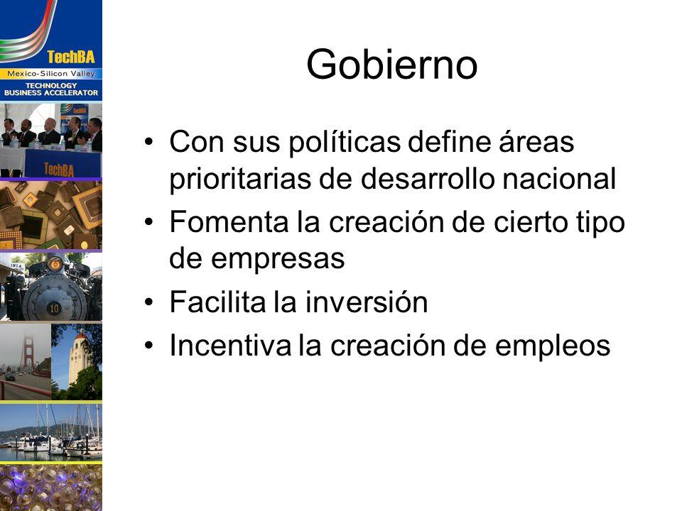 Gobierno Con sus políticas define áreas prioritarias de desarrollo nacional. Fomenta la creación de cierto tipo de empresas.