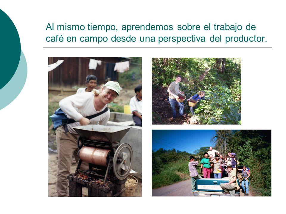 Al mismo tiempo, aprendemos sobre el trabajo de café en campo desde una perspectiva del productor.