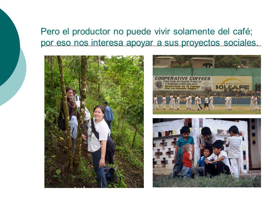 Pero el productor no puede vivir solamente del café; por eso nos interesa apoyar a sus proyectos sociales.