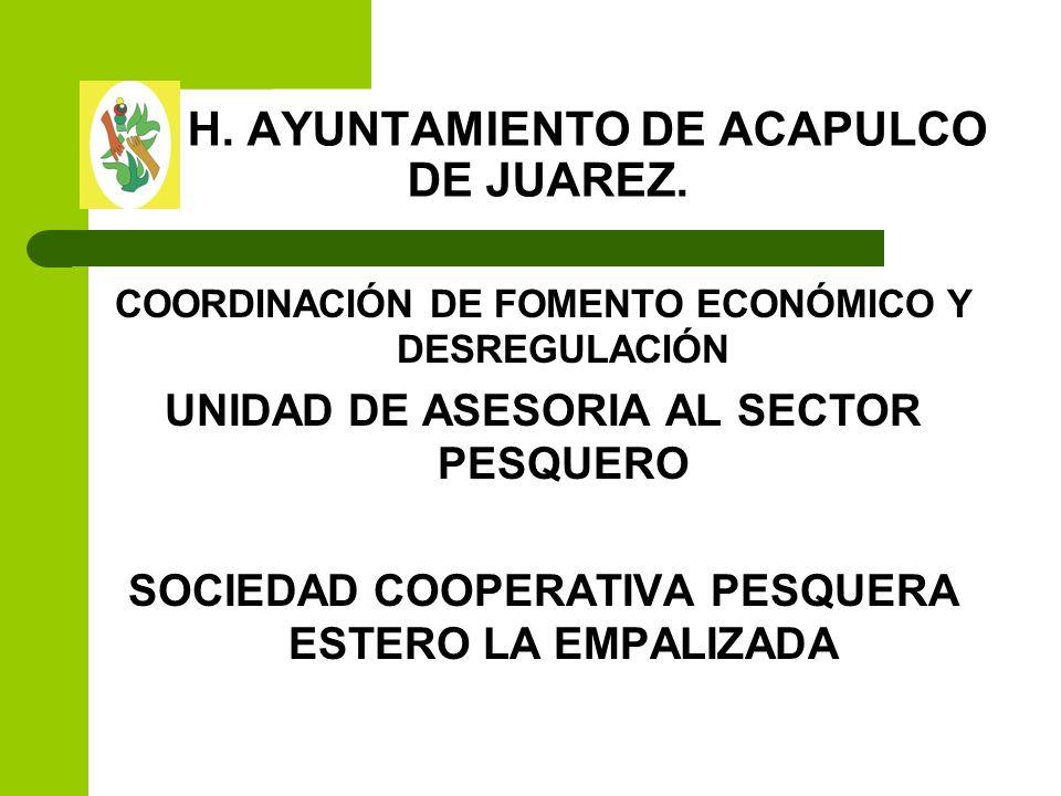 H. AYUNTAMIENTO DE ACAPULCO DE JUAREZ.