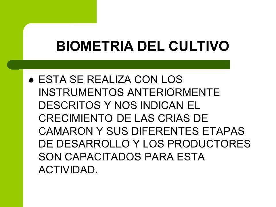 BIOMETRIA DEL CULTIVO