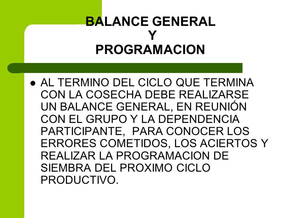 BALANCE GENERAL Y PROGRAMACION