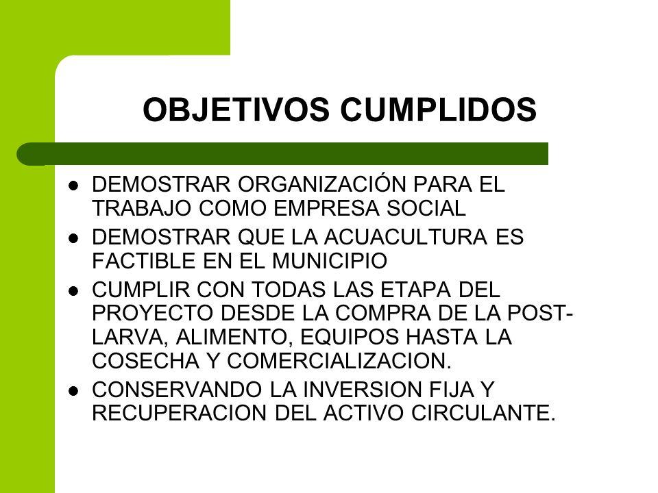 OBJETIVOS CUMPLIDOSDEMOSTRAR ORGANIZACIÓN PARA EL TRABAJO COMO EMPRESA SOCIAL. DEMOSTRAR QUE LA ACUACULTURA ES FACTIBLE EN EL MUNICIPIO.