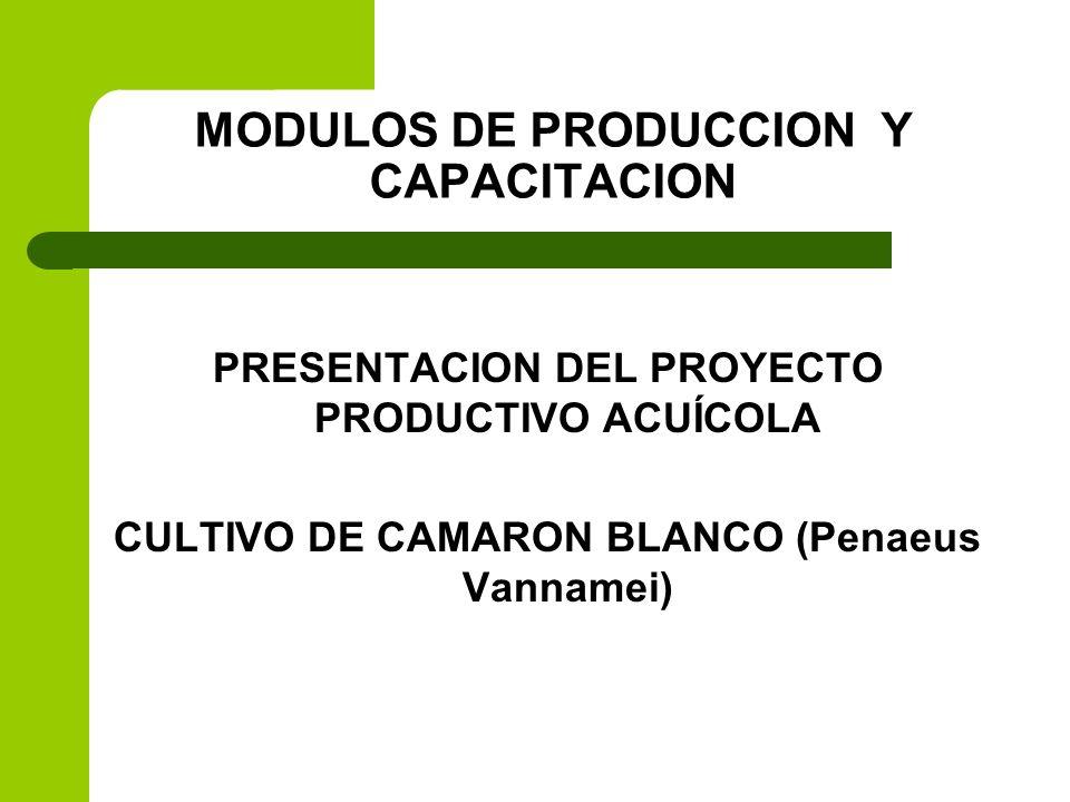 MODULOS DE PRODUCCION Y CAPACITACION