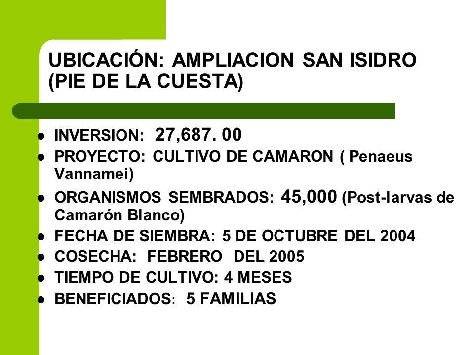 UBICACIÓN: AMPLIACION SAN ISIDRO (PIE DE LA CUESTA)