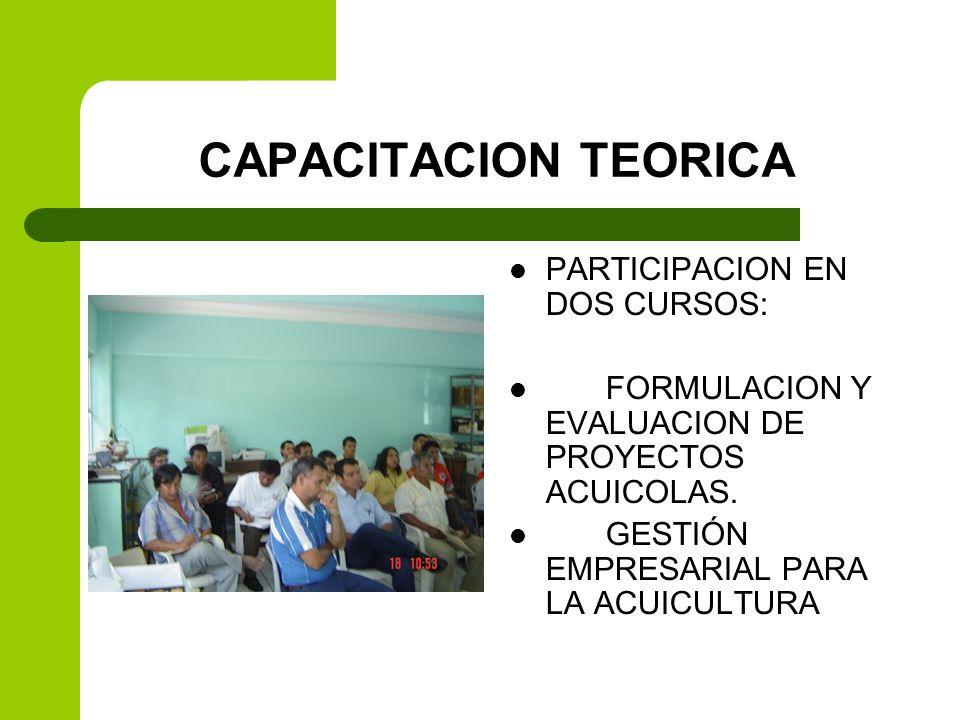 CAPACITACION TEORICA PARTICIPACION EN DOS CURSOS: