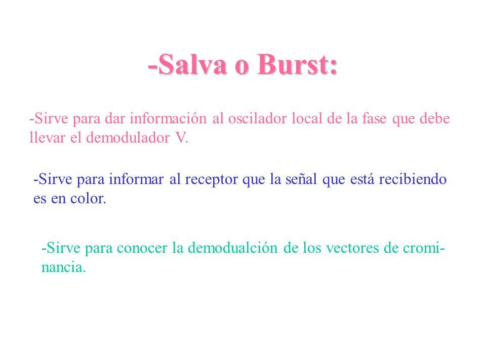 -Salva o Burst:-Sirve para dar información al oscilador local de la fase que debe. llevar el demodulador V.