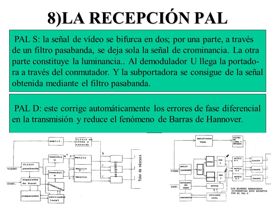 8)LA RECEPCIÓN PALPAL S: la señal de vídeo se bifurca en dos; por una parte, a través.