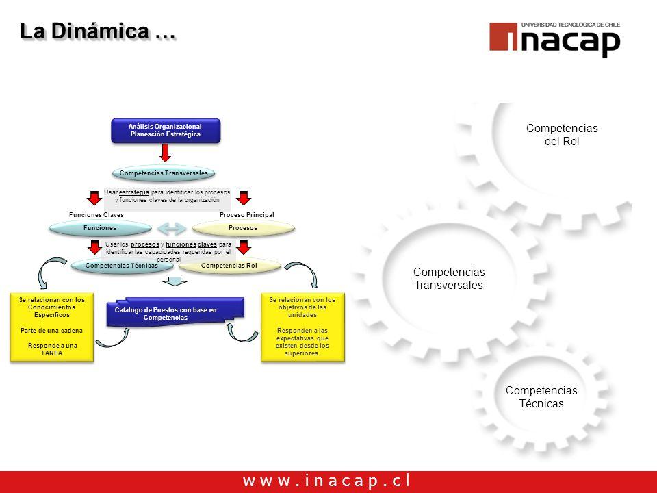 La Dinámica … Competencias del Rol Competencias Transversales