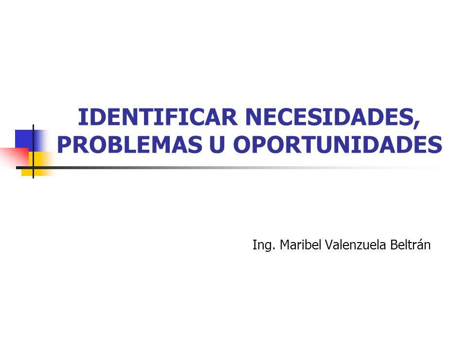 IDENTIFICAR NECESIDADES, PROBLEMAS U OPORTUNIDADES