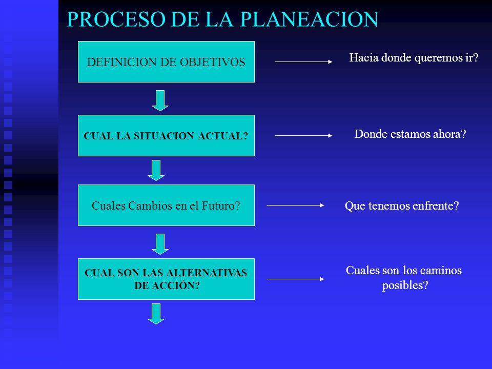 PROCESO DE LA PLANEACION