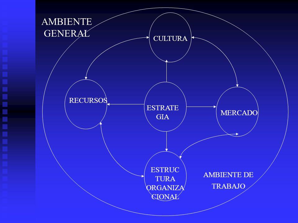 AMBIENTE GENERAL CULTURA RECURSOS ESTRATE MERCADO GIA ESTRUC TURA