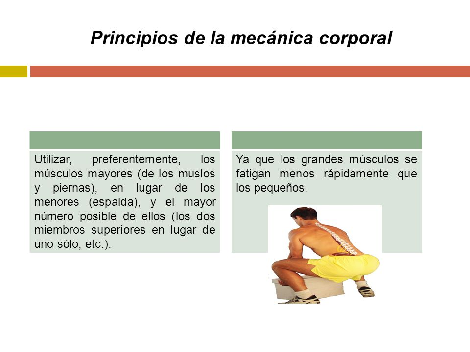 Principios de la mecánica corporal