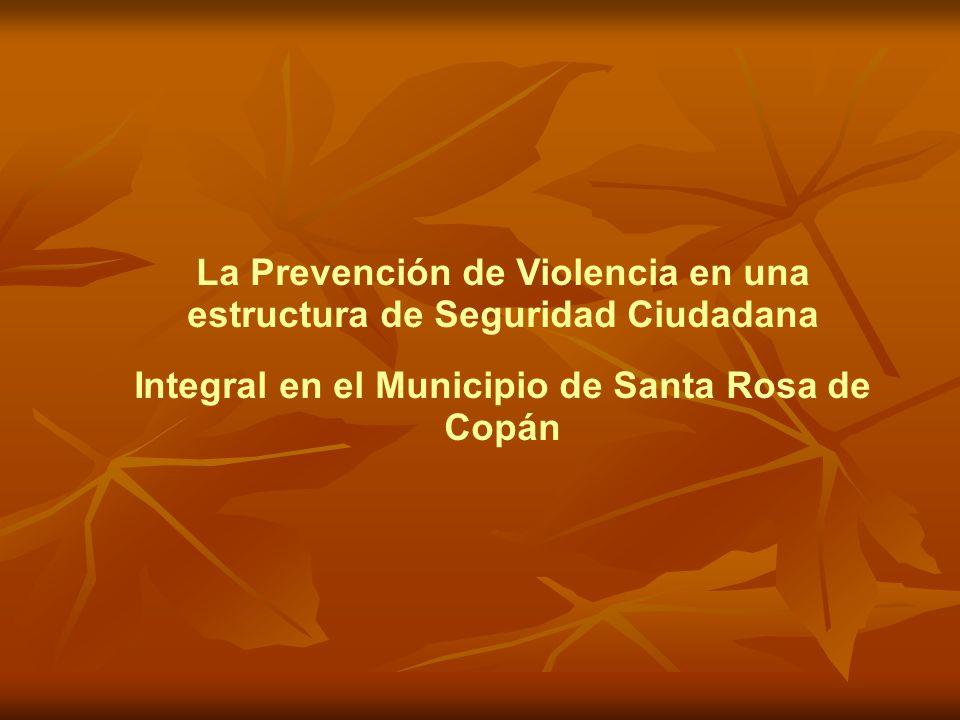 La Prevención de Violencia en una estructura de Seguridad Ciudadana