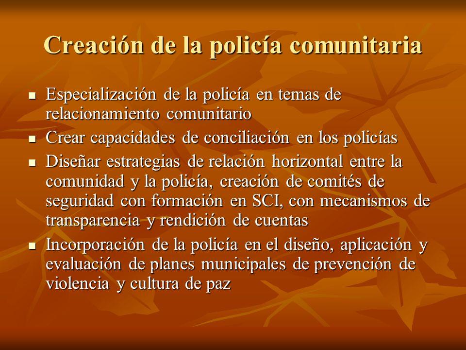 Creación de la policía comunitaria