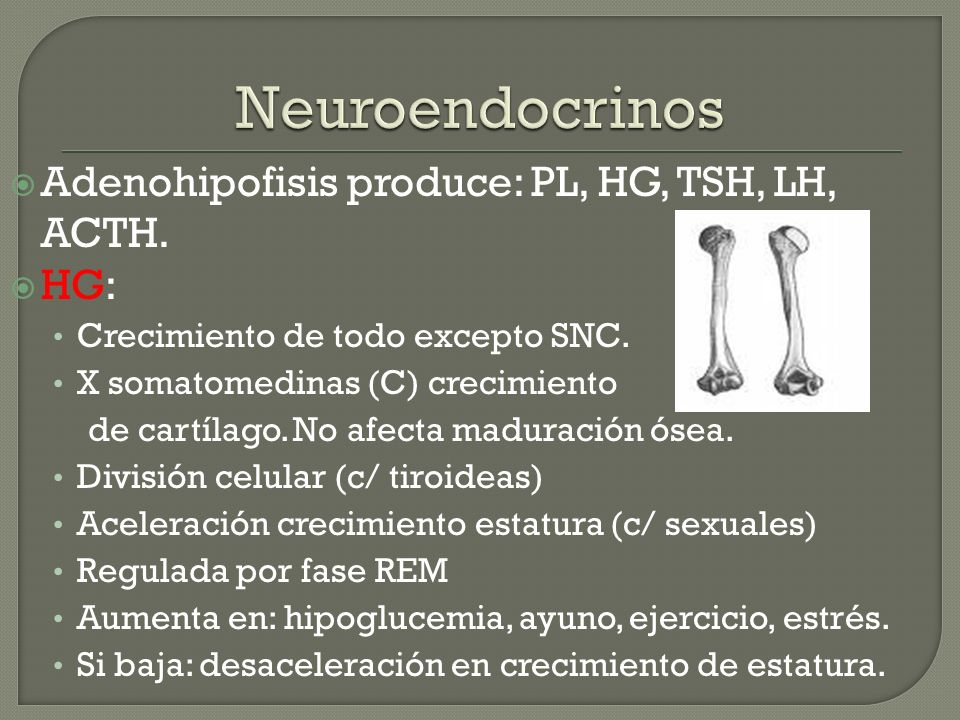 Neuroendocrinos Adenohipofisis produce: PL, HG, TSH, LH, ACTH. HG: