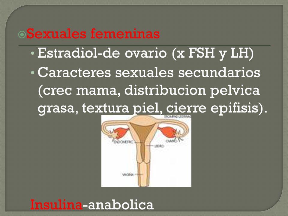 Sexuales femeninas Estradiol-de ovario (x FSH y LH)