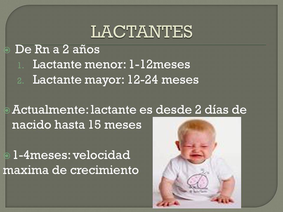 LACTANTES De Rn a 2 años Lactante menor: 1-12meses