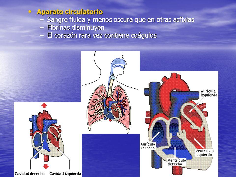 Aparato circulatorioSangre fluida y menos oscura que en otras asfixias.