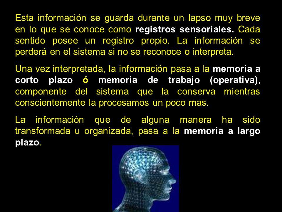 Esta información se guarda durante un lapso muy breve en lo que se conoce como registros sensoriales. Cada sentido posee un registro propio. La información se perderá en el sistema si no se reconoce o interpreta.