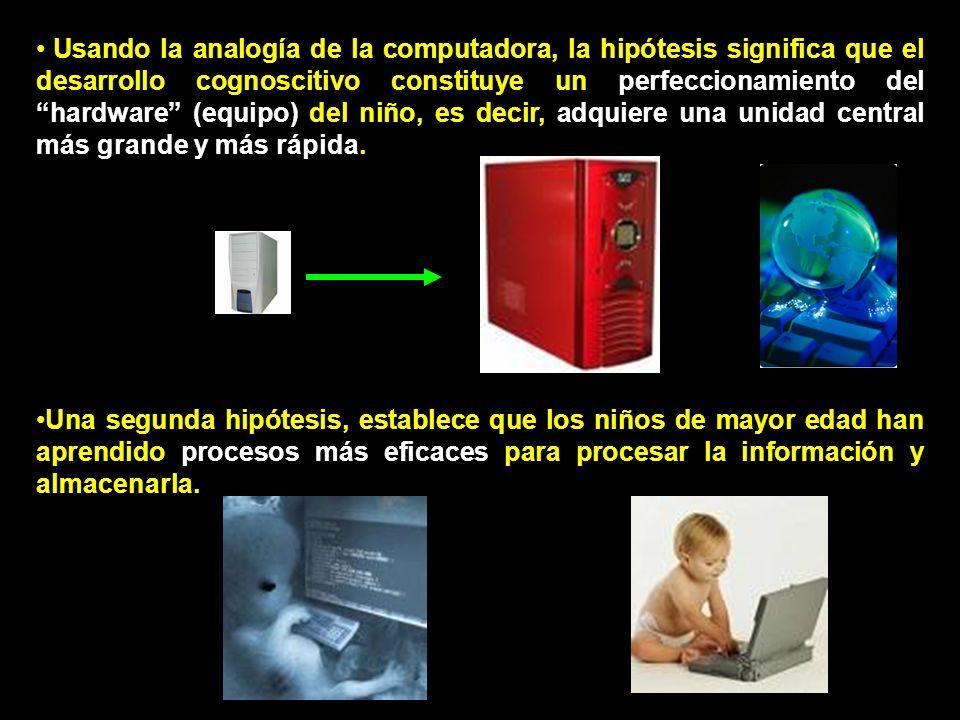 Usando la analogía de la computadora, la hipótesis significa que el desarrollo cognoscitivo constituye un perfeccionamiento del hardware (equipo) del niño, es decir, adquiere una unidad central más grande y más rápida.
