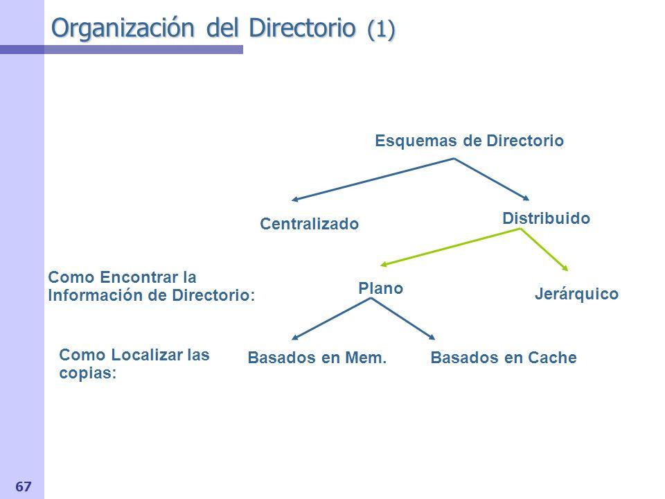 Organización del Directorio (1)