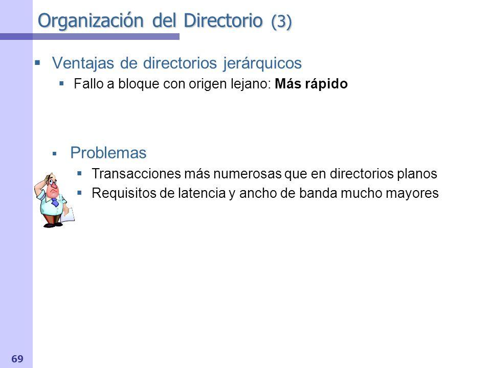 Organización del Directorio (3)