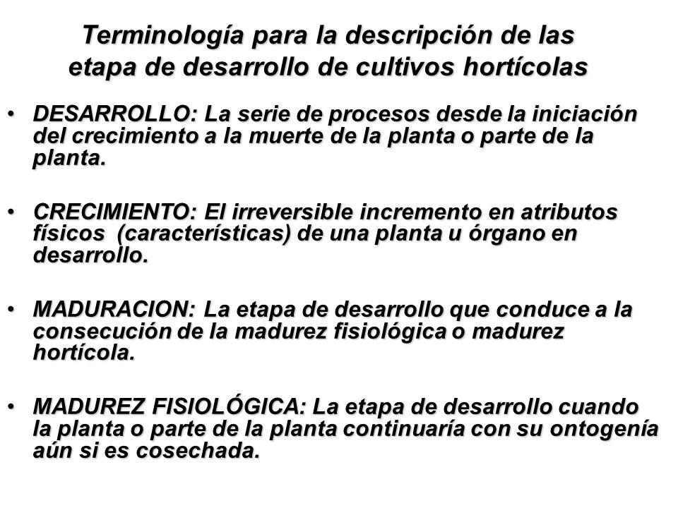 Terminología para la descripción de las etapa de desarrollo de cultivos hortícolas