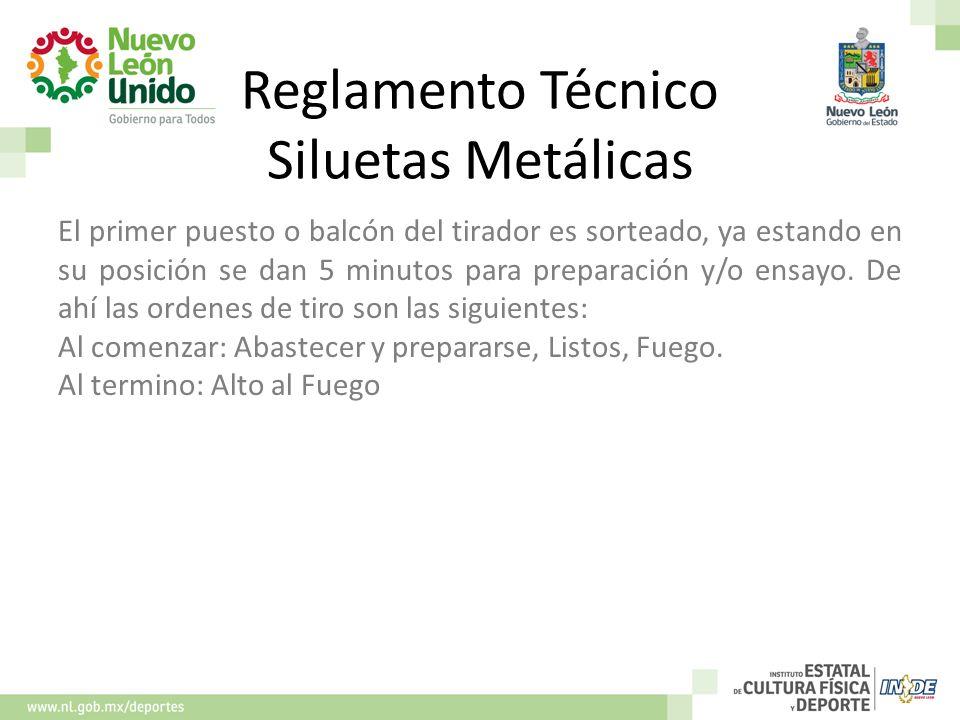 Reglamento Técnico Siluetas Metálicas