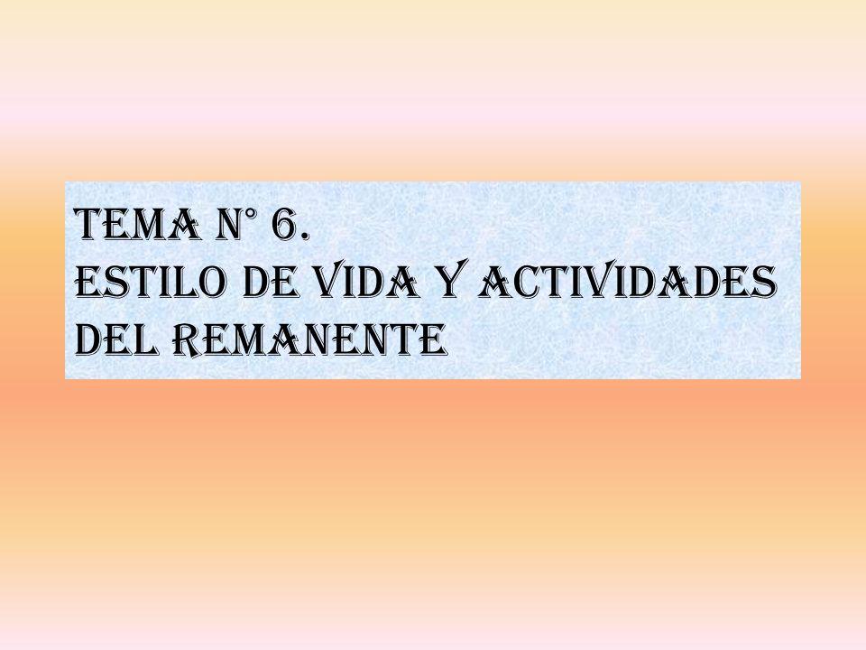Tema n° 6. ESTILO DE VIDA Y ACTIVIDADES DEL REMANENTE