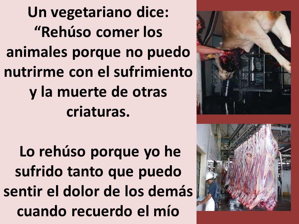 Un vegetariano dice: Rehúso comer los animales porque no puedo nutrirme con el sufrimiento y la muerte de otras criaturas.