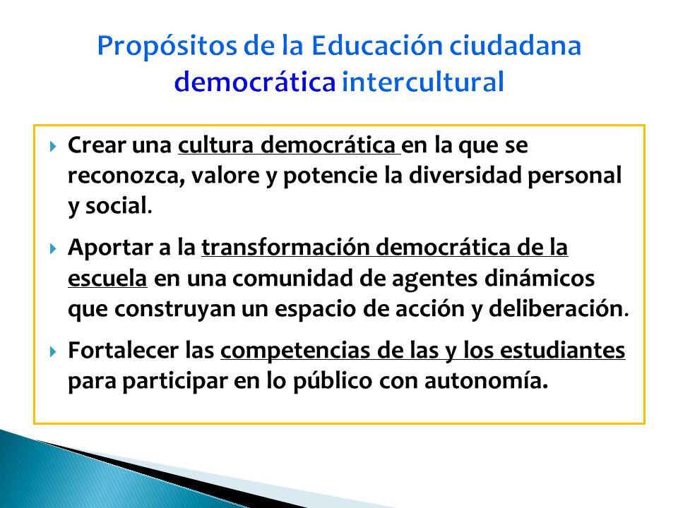 Propósitos de la Educación ciudadana democrática intercultural