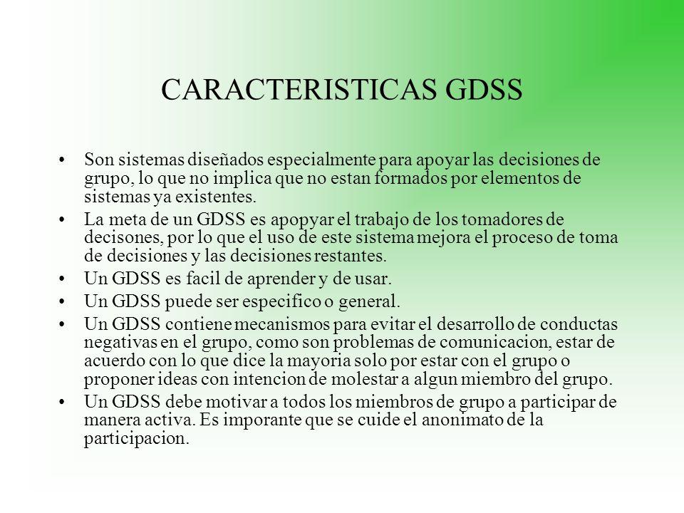 CARACTERISTICAS GDSS