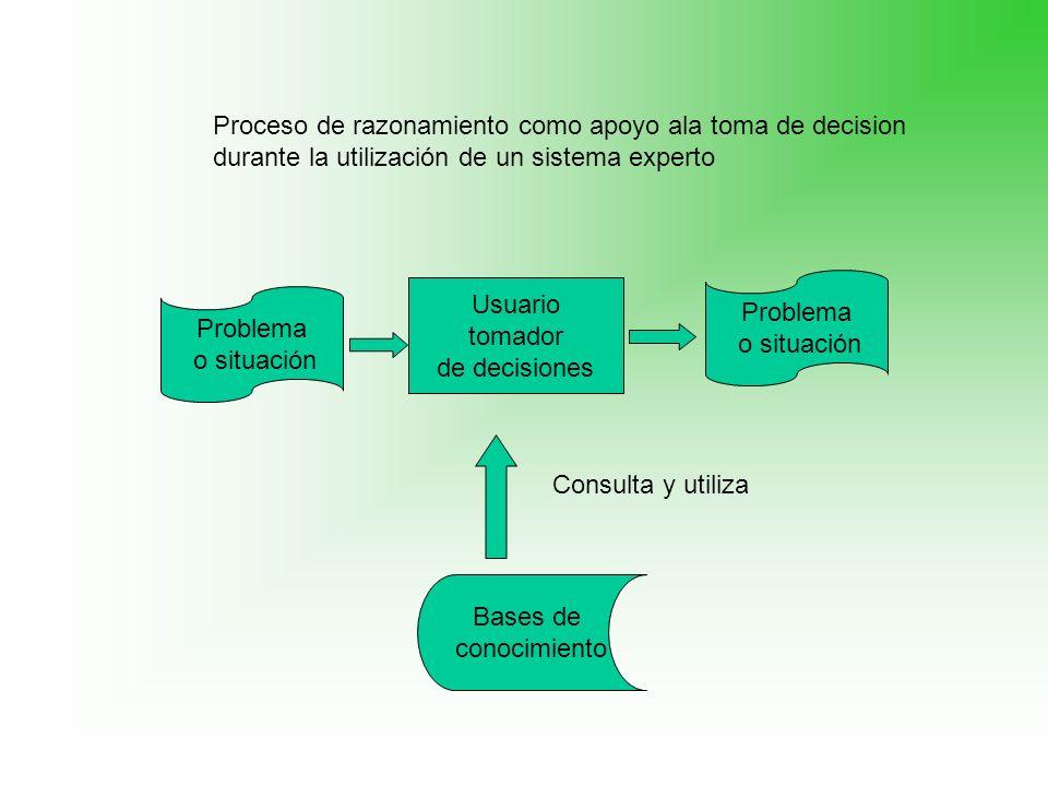 Proceso de razonamiento como apoyo ala toma de decision durante la utilización de un sistema experto