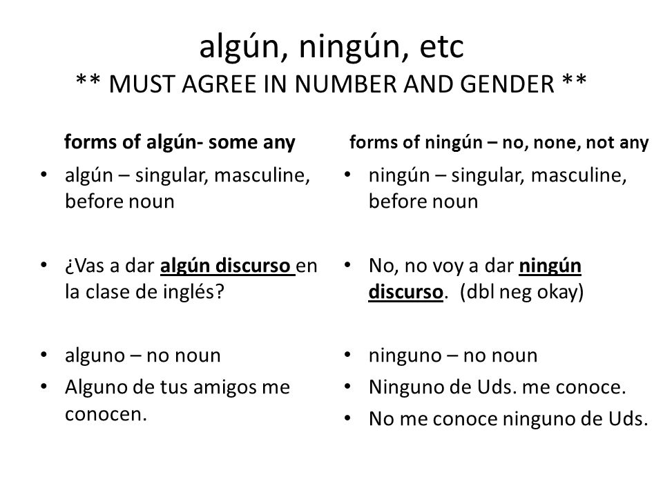 algún, ningún, etc ** MUST AGREE IN NUMBER AND GENDER **