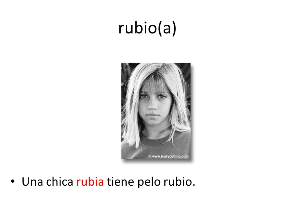rubio(a) Una chica rubia tiene pelo rubio.