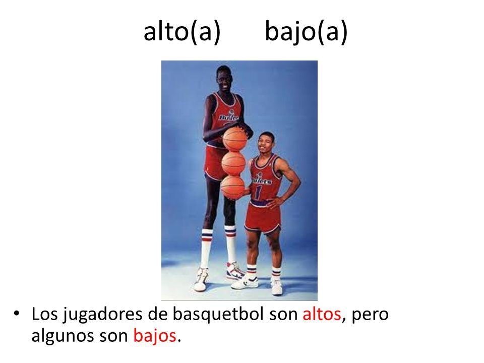 alto(a) bajo(a) Los jugadores de basquetbol son altos, pero algunos son bajos.