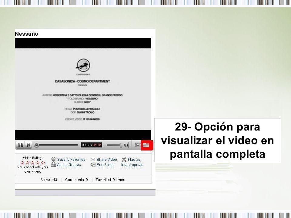 29- Opción para visualizar el video en pantalla completa