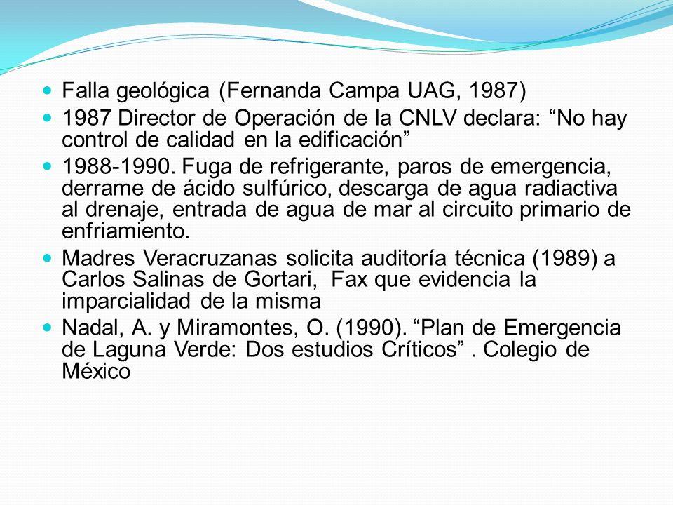 Falla geológica (Fernanda Campa UAG, 1987)