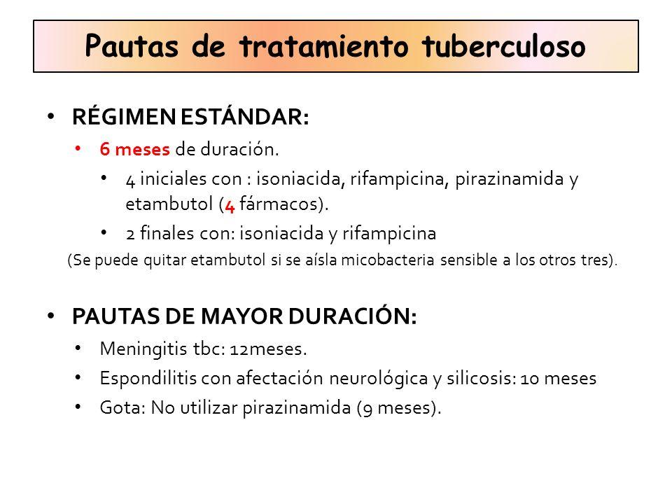 Pautas de tratamiento tuberculoso
