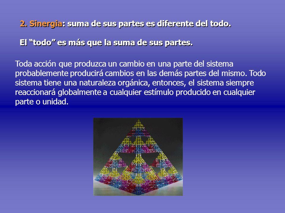 2. Sinergia: suma de sus partes es diferente del todo.