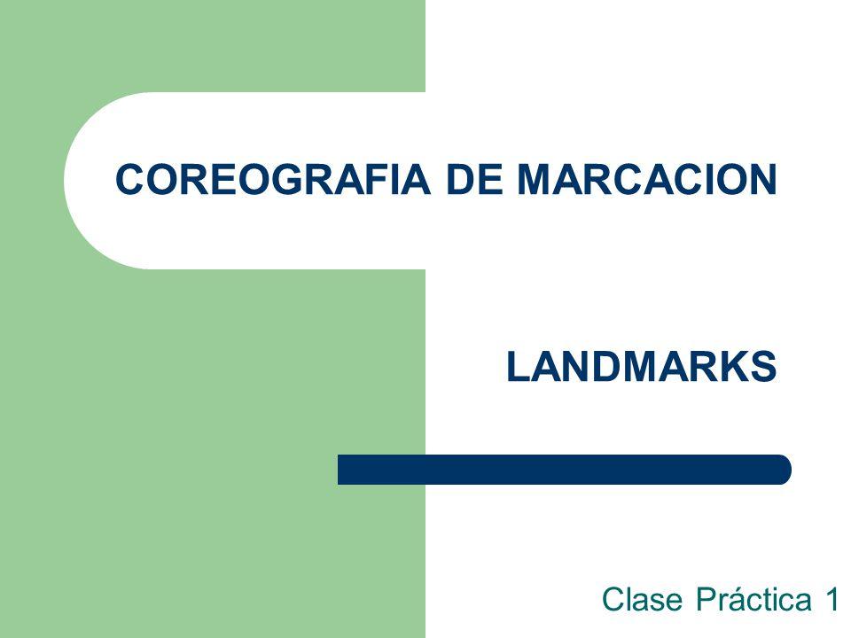 COREOGRAFIA DE MARCACION