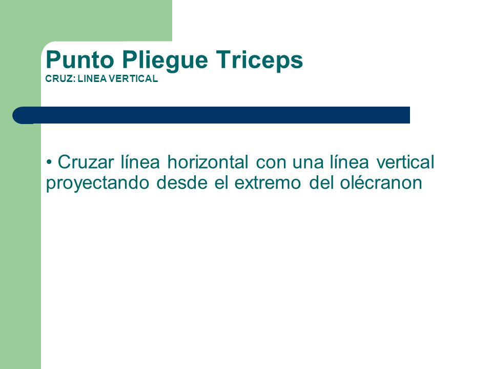 Punto Pliegue Triceps CRUZ: LINEA VERTICAL
