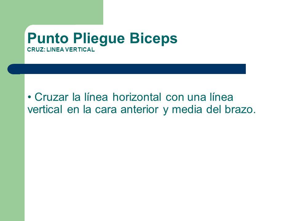 Punto Pliegue Biceps CRUZ: LINEA VERTICAL