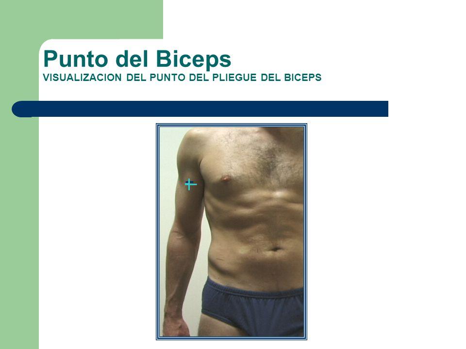 Punto del Biceps VISUALIZACION DEL PUNTO DEL PLIEGUE DEL BICEPS