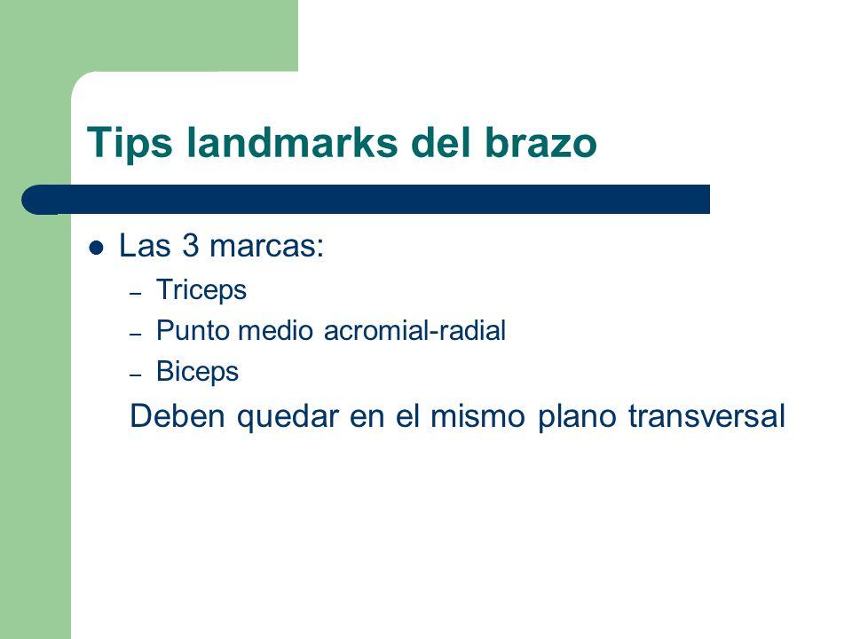Tips landmarks del brazo